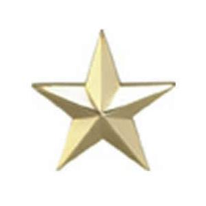 1 Star Rank Insignia Pin