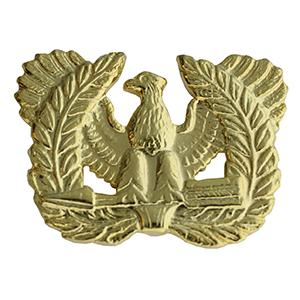 Army Warrant Officer Insignia