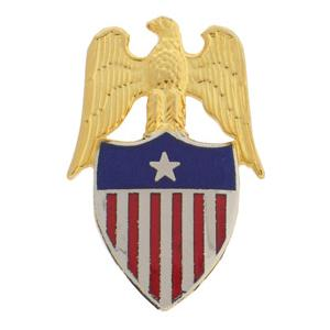 Aide to Brigadier General Insignia