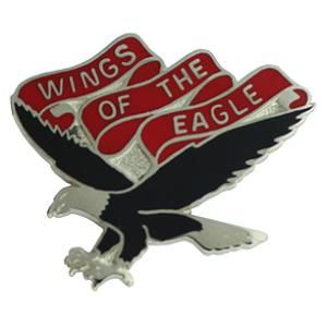101st Aviation Battalion Pin