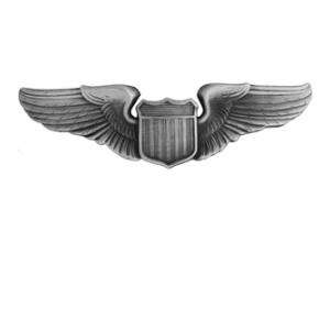 Air Force Pilot Wing