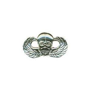 Winged Skull Pin