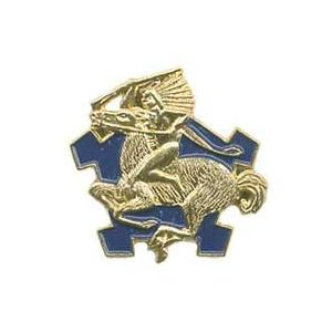 9th Cavalry Regiment Pin