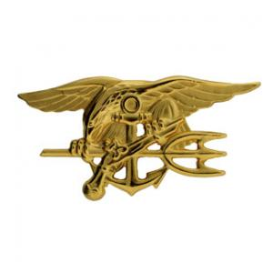 Navy Special Warfare (SEAL)