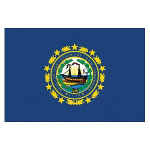 New Hampshire State Flag (3' x 5')