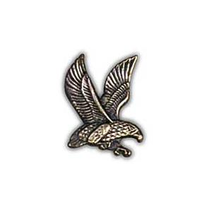 Air Force Falcon Right Pin