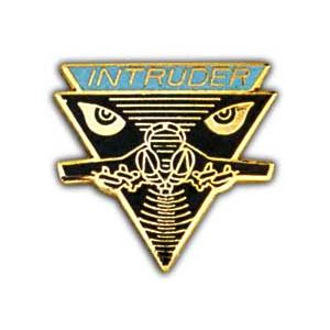 Air Force Intruder Pin