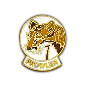 Air Force Prowler Pin