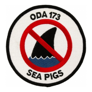 Special Forces ODA-173 Patch