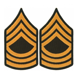 Army Master Sergeant (Sleeve Chevron) (Male)