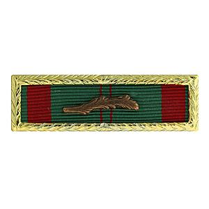 Republic of Vietnam Civil Actions Unit Citation (Small Frame Ribbon)