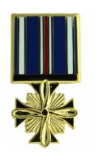 Distinguished Flying Cross (Hat Pin)