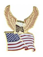US Flag with Eagle Pin