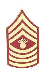 Marine Master Gunnery Sergeant E-9 Pin (Gold on Red)