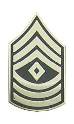 Army First Sergeant E-8 Pin (Gold on Green)