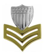 Coast Guard Petty Officer 1st Class Rank (Collar Size)