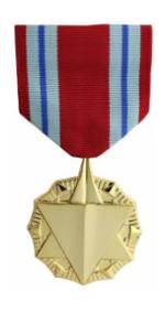 Combat Readiness Anodized Medal (Full Size)