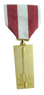 Vietnam Training Service Medal 2nd. Class (Full Size Medal)