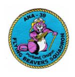 Navy Association of Naval Aviation Patches (ANA)