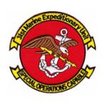 31st Marine Expeditionary Unit Patch