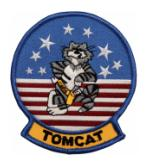 Tomcat Patches