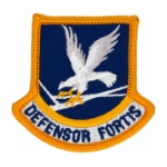 Air Force Beret Flashes
