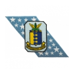 Air Force Bombardment Wing Patches