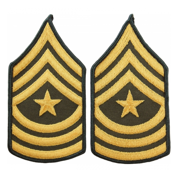 Army Sergeant Major (Sleeve Chevron) (Male)